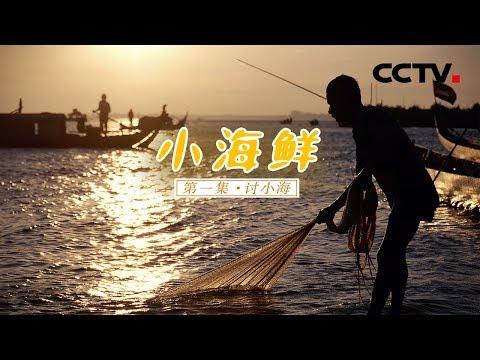 《小海鲜》第一集 讨小海 | CCTV纪录