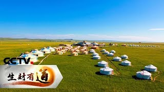 《生财有道》 20190807 夏日经济系列 草原上的夏日财富| CCTV财经