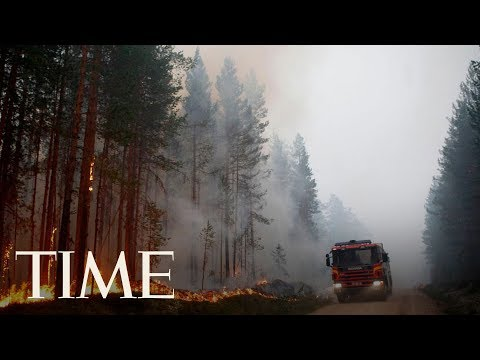 There Are Wildfires Burning In The Arctic Circle Amid Sweden's Record-Breaking Heat Wave | TIME