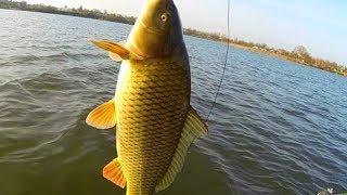 фильм успешная рыбалка Карпов пруд