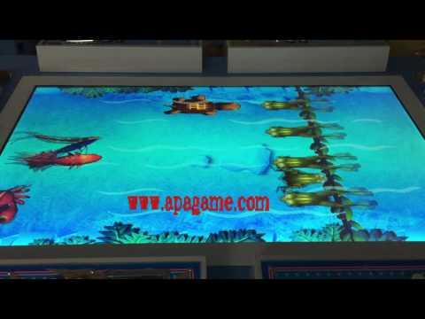 Water Animal Race Running Betting Game Machine