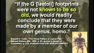 mysteries of the garden of eden solving decoding the past and the bible