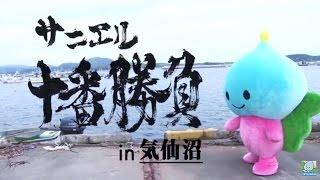サニエル十番勝負  その壱「ホヤぼーや(気仙沼市)」