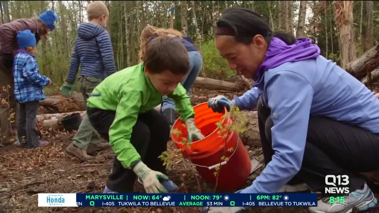 Bellingham wins national award for re-routing salmon back to Squalicum Creek