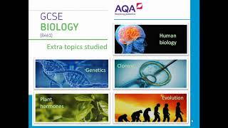 KS4 Science Options