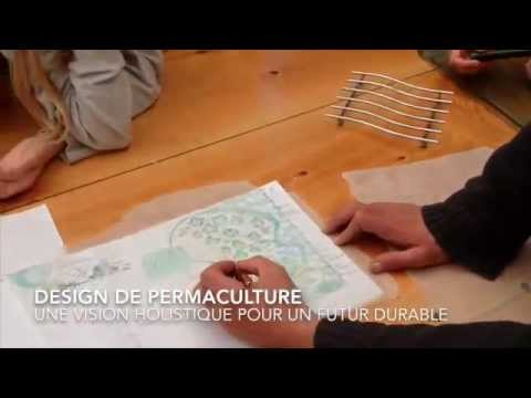 Jardin foret permaculture bouchot 2014 stage alv oles for Jardin foret