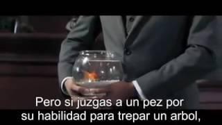 Video para reflexionar sobre la educación - prohibido no verlo