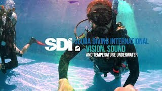Vision, Sound and Temperature Underwater