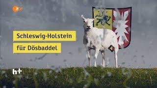 Schleswig-Holstein - heuteplus | ZDF