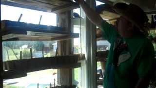 5 On The Farm: Diy  Cheap Window Shelves