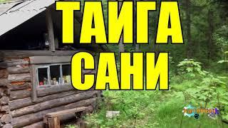 Сани | ТАЙГА