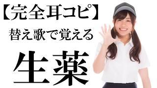 【完全耳コピ】替え歌で覚える生薬(センナ)