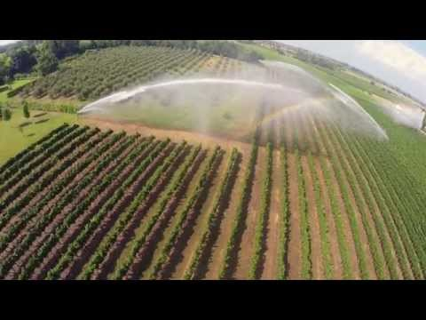 Irrigazione vigneto con 3 gemini drone view youtube for Irrigazione vigneto