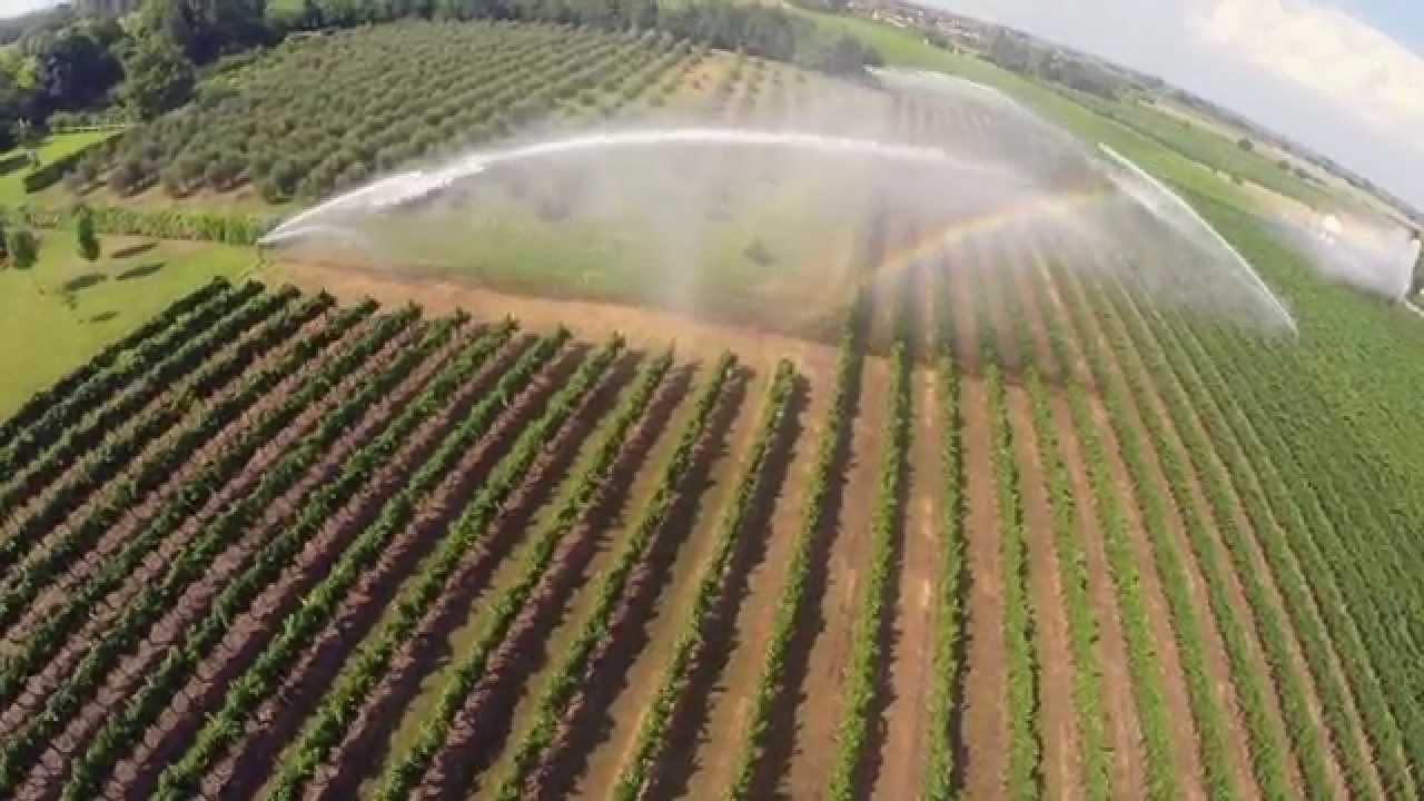 Irrigazione vigneto con 3 gemini drone view doovi for Irrigazione vigneto