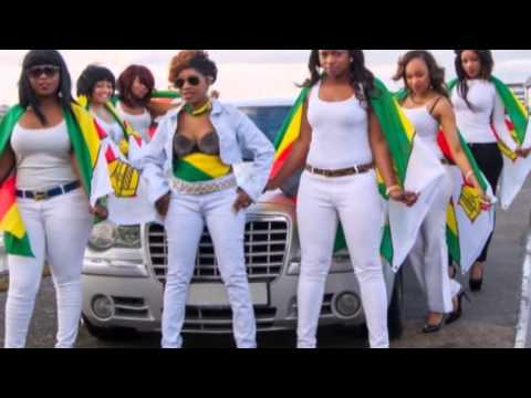 Ricky fire - Maibhebhi Epa Zimba [Unofficial Video]