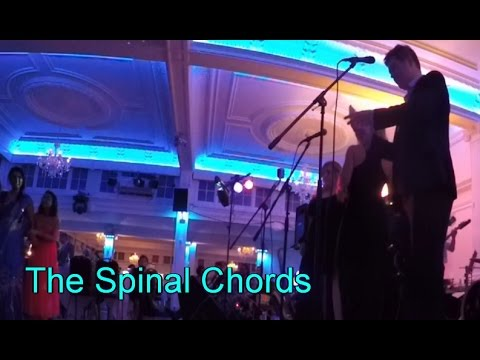 The Spinal Chords Crazy In Love Cover - YouTube