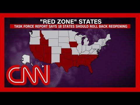 White House coronavirus task force aware of 18 'red zone' states