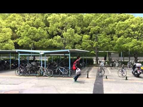Nice Weather In Osaka University