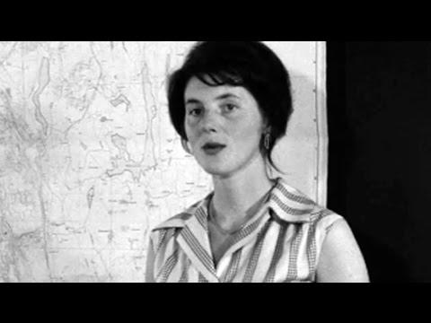 Innflytterbyen, 1964