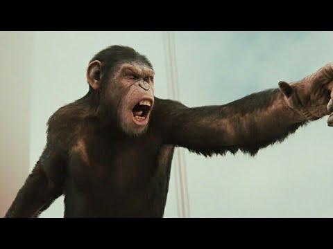 El Planeta de los Simios: (R)Evolución (2011) - Escena del Puente Parte 2 [Español Latino]