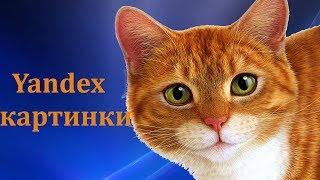 Как найти  картинку нужного размера в Яндексе. #Yandex - как работает поиск по картинке.