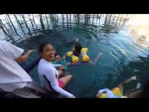 TiNuy-An Falls, EnChanTed RiVer, and SiBadan Fish CagE Adventure in Mindanao