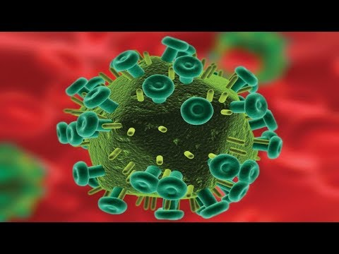 The History of the AIDS Epidemic