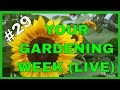 Learn About Gardening (Q&A)