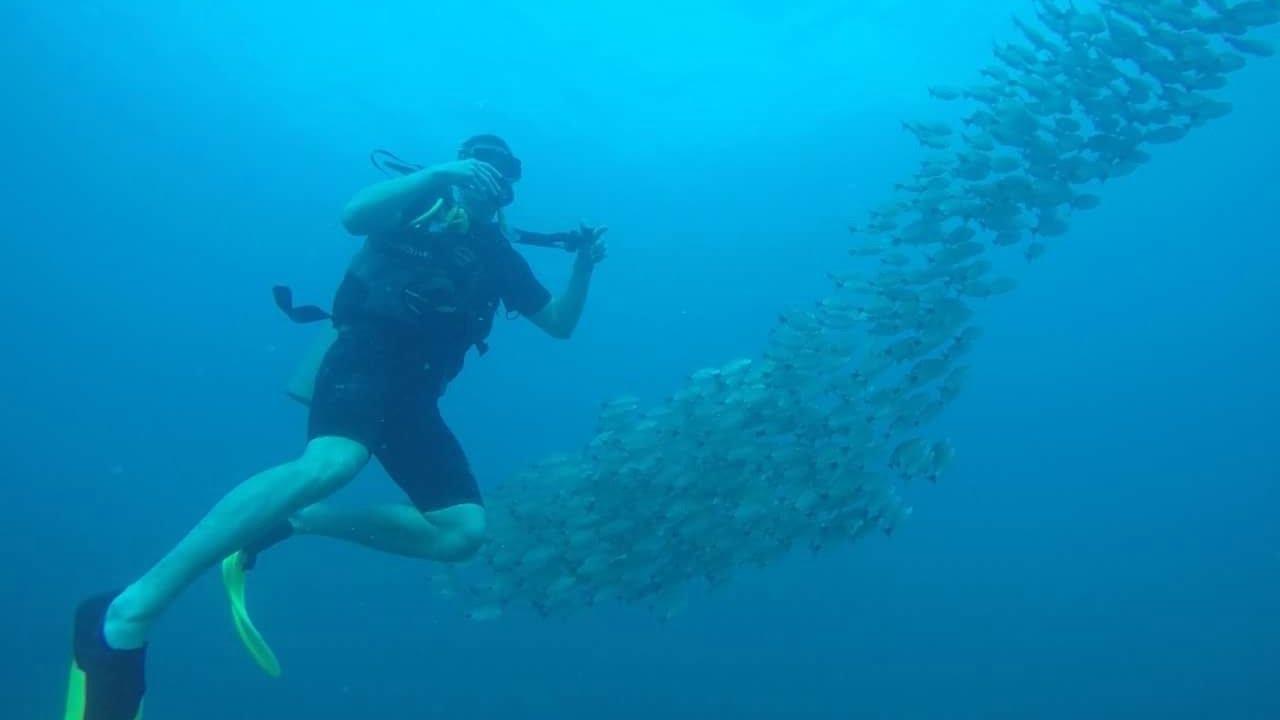 Tobermory Scuba Diving