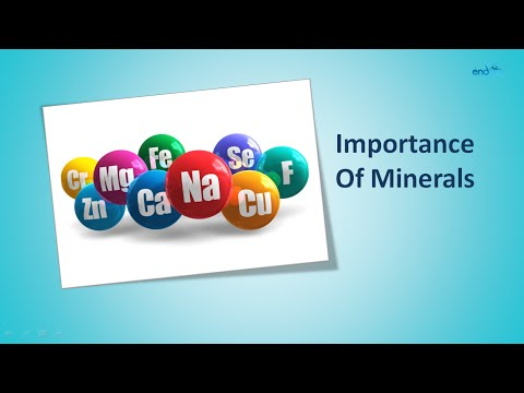 Importance Of Minerals | Macro Minerals and Trace Minerals