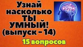 УЗНАЙ НАСКОЛЬКО ТЫ УМЕН И ЭРУДИРОВАН(ТЕСТ) - выпуск 14