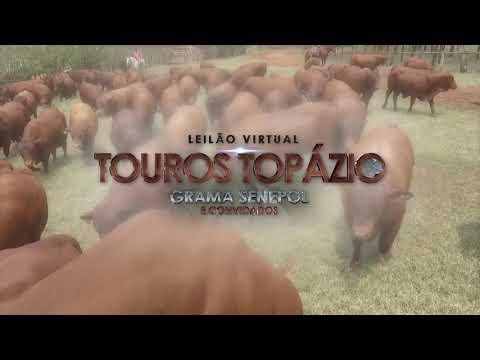 Leilão Topázio 2a ETAPA
