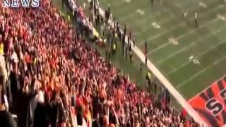 Pittsburgh Steelers vs Cincinnati Bengals Highlights Week 14