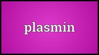 Plasmin Meaning