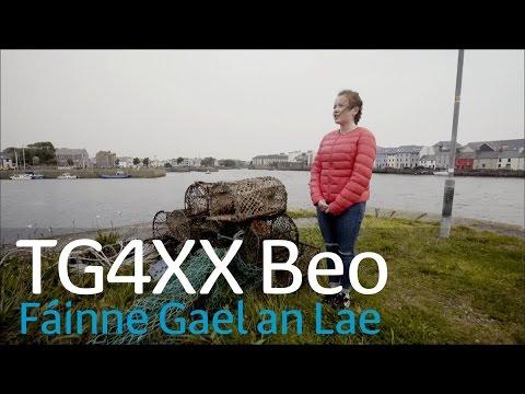 TG4XX | Fáinne Gael an Lae