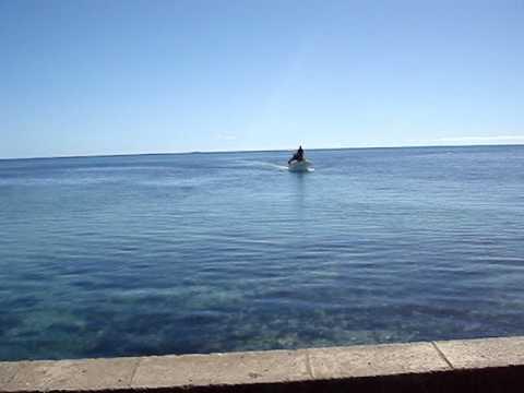 Faleloa area Ha'apai