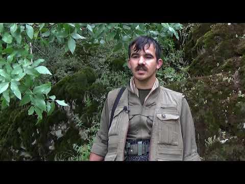 Soran guerrillas also in Bradost