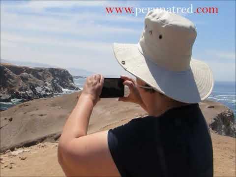 Tour a la costa de Arequipa