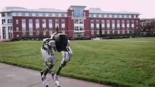 Робот Cassie от Agility Robotics, новости робототехники.