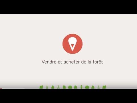 Vendre et acheter - La bourse foncière de La Forêt bouge