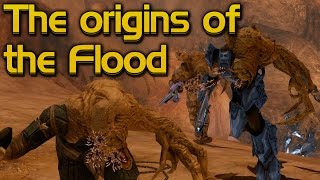 The origins of the Flood and the first outbreak