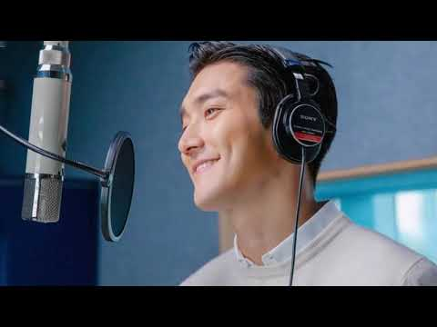 Download Siwon Choi