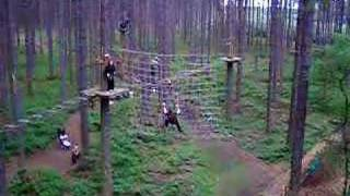 Go-ape Crash @ Sherwood Forest