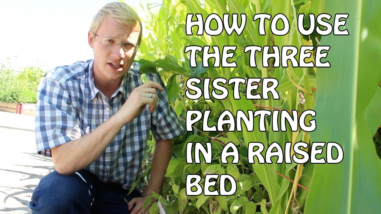 How Make Raised Garden Box