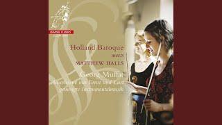 Concerto VI - Quis hic?: II. Aria, Allegro