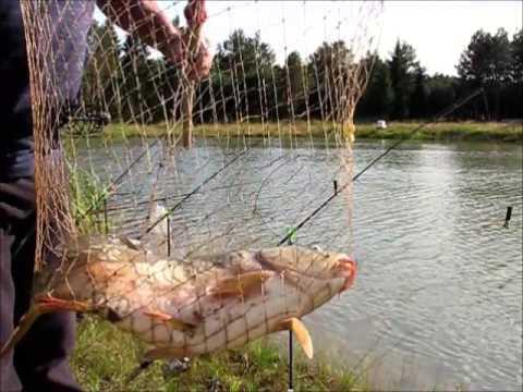 на что ловить рыбу в тверской области