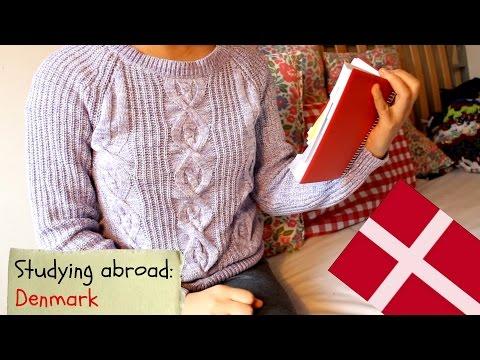 My study abroad experience in Denmark - ArtandbeautyfreakVLOG