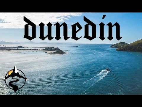 THE BEST THINGS TO DO IN DUNEDIN, NEW ZEALAND | WILD DUNEDIN FESTIVAL
