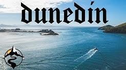 THE BEST THINGS TO DO IN DUNEDIN, NEW ZEALAND | WILD DUNEDIN FESTIVAL