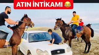 YARIŞ ATLARI İLE SAFARİ YAPTIK! SİNAN'A ( PUSU )